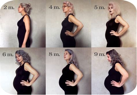 pregnancy timeline pregnancy on the autism spectrum part ii entering 35th of may