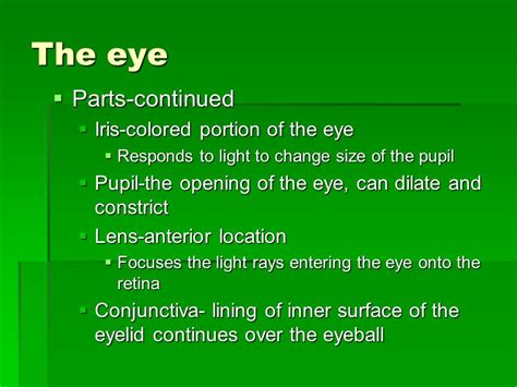 colored portion of the eye chapter 6 injuries ppt
