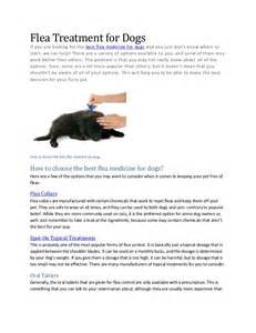best flea treatment for home flea treatment for dogs how to choose the best flea