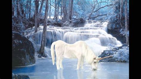 imagenes de pegasos y unicornios reales pegasos y unicornios regalo para una gran amiga y