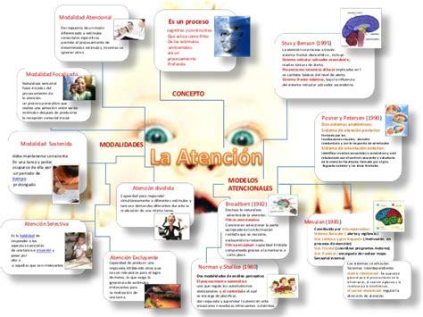 atencion imagenes mentales y conciencia la atenci 243 n mapa mental psicolog 237 a de la sensopercepci 243 n