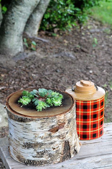 how to make a succulent planter how to make a succulent log planter lumberjack not