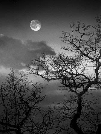 Paisagens (Fotografia em preto e branco) Arte na