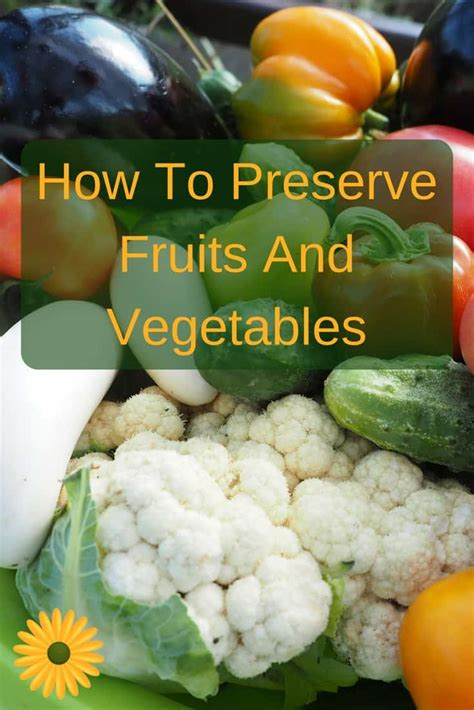 How To Freeze Vegetables From The Garden How To Preserve Fruits And Vegetables