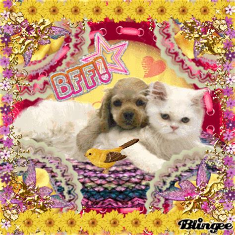 puppy best friends cat and puppy best friends forever picture 130650384 blingee