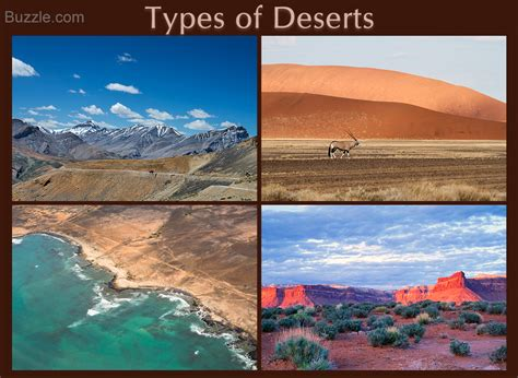 types of desert biome a definitive guide to its animals and plants