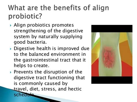 align ibs side effects what is align probiotic benefits and side effects