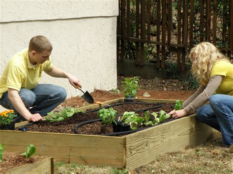 How To Start A Flower Garden In Your Backyard by How To Start A Vegetable Garden Bonnie Plants