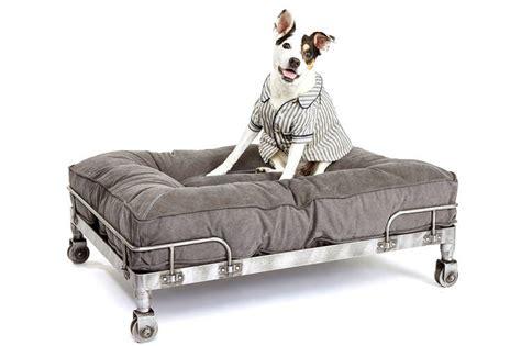 restoration hardware dog bed a flowchart guide to choosing a dog bed wsj