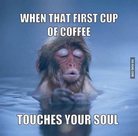 Coffee Meme - best 25 coffee meme ideas on pinterest coffee shop