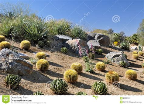 colorful desert landscape royalty free stock images image 29532019