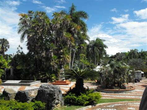 National Botanical Gardens Gardens Picture Of National Botanical Garden Santo Domingo Tripadvisor
