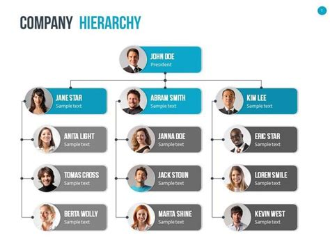 graphic hierarchy chart 17 best ideas about organizational chart on