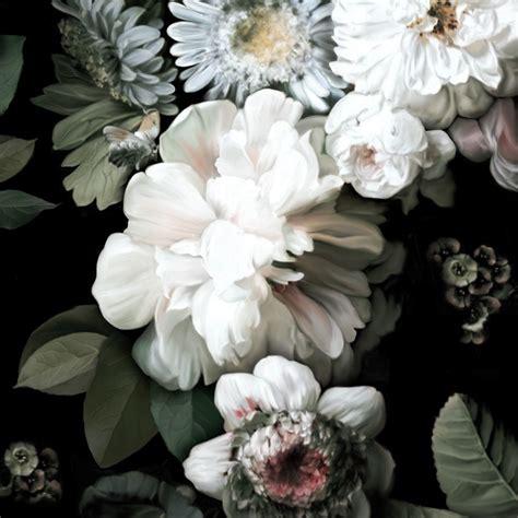 Large Flower Wall Murals dark floral wallpaper by ellie cashman design