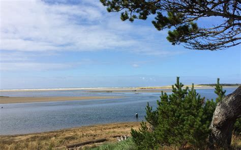 best tips on where and how to go birding in seaside oregon