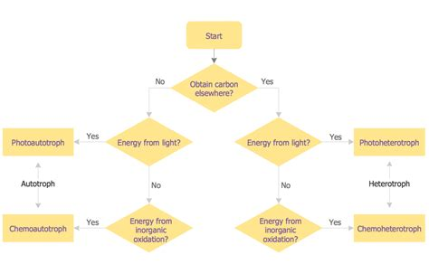 science flowchart sles of flowcharting flowchart exles and templates