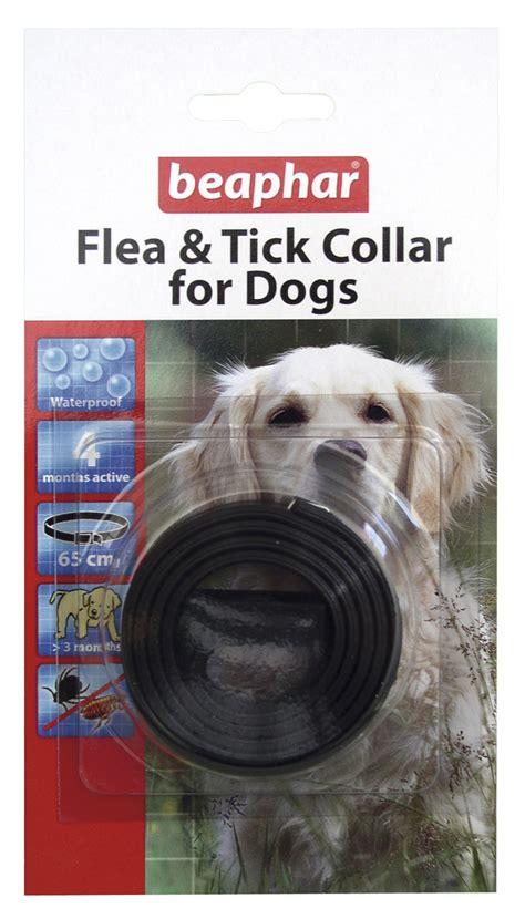 tick collar for dogs beaphar plastic flea tick collar for dogs