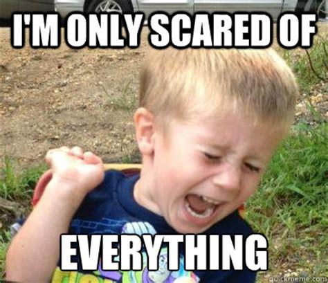 Everything Meme - scaredy cat sam memes quickmeme