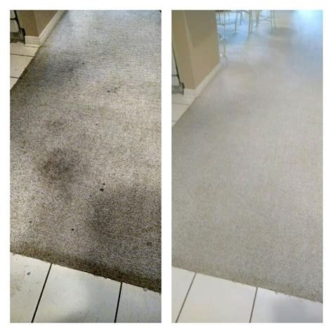 upholstery cleaning companies carpet cleaning companies gulf shores kwik dry