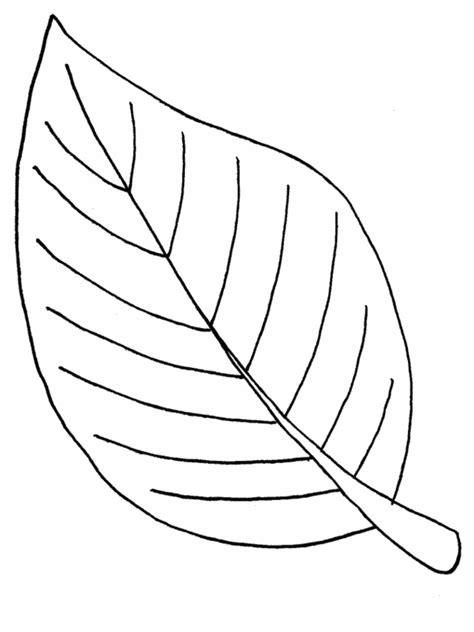 diferentes imagenes para dibujar bonitas imagenes para una hoja para colorear de diferentes plantas imagenes de