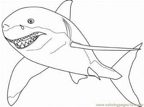 great white shark coloring page az coloring pages