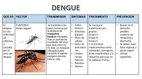 imagenes de vectores transmisores de enfermedades enfermedades transmitidas por vectores