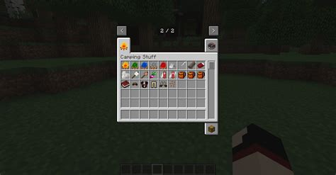 The Mods the cing mod minecraft mods