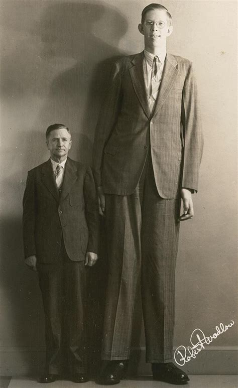 2 meter feet 10 tallest people in history top master s in healthcare
