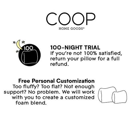 coop home goods the pillow ultra tech cover with