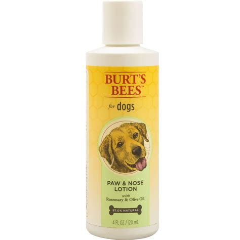 paw lotion burt s bees paw nose lotion for dogs 4 fl oz