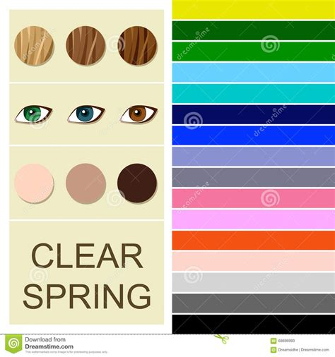 clear color palette stock seasonal color analysis palette for clear