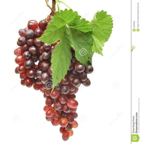 Imagenes Uvas Rojas | uvas rojas