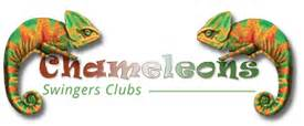 chameleons swinging club swingrs net is the midlands the best place to live if you
