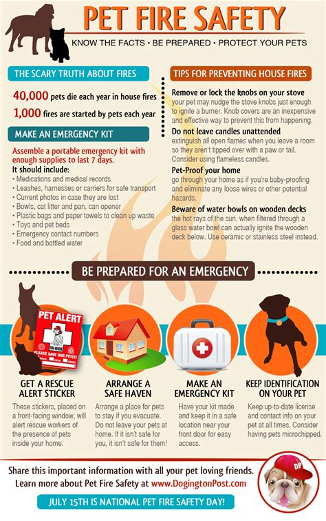 facts the pet parent s a to z home care encyclopedia books infographic pet safety are you prepared to protect