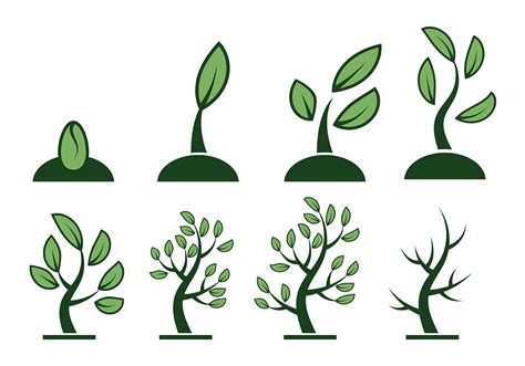 free clipart vector free grow up vector free vector stock