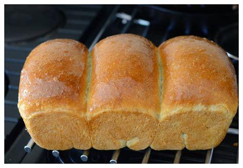 Dijamin Cetakan Roti Bread Shaping medan food roti tawar banting dengan metode tang zong water roux