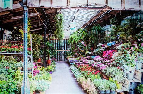 mercato fiori il mercato dei fiori a ile de la cit 233 nel cuore di parigi