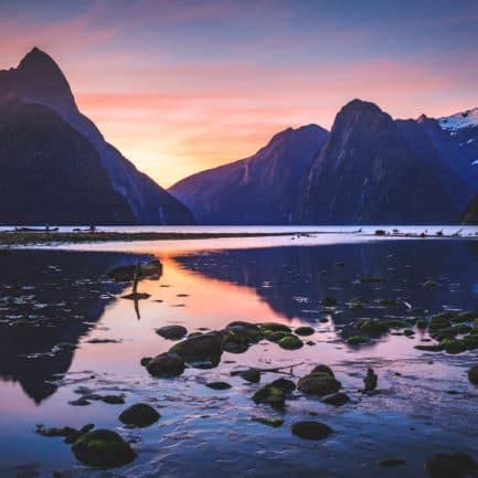Free Giveaways New Zealand - new zealand archives young adventuress