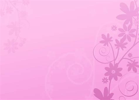 color pink pink color wallpapers wallpapersafari