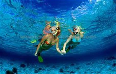 freedom boat club cost virginia grand bahama island grand bahama tour deals