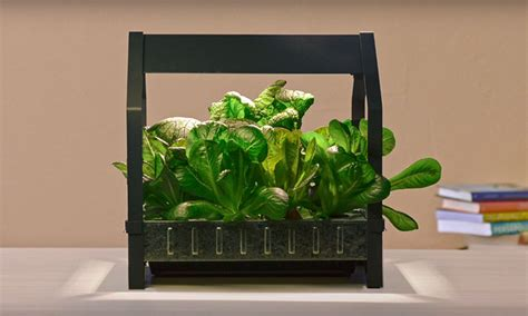 ikea indoor garden ikea launches indoor garden that can grow food all year highsnobiety