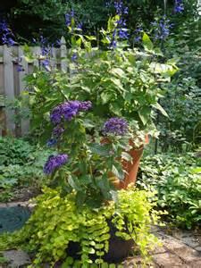 beautiful container garden ideas more beautiful colorful container garden ideas tended