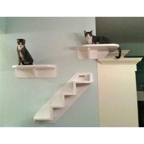 100 best images about cat run and enclosures on pinterest