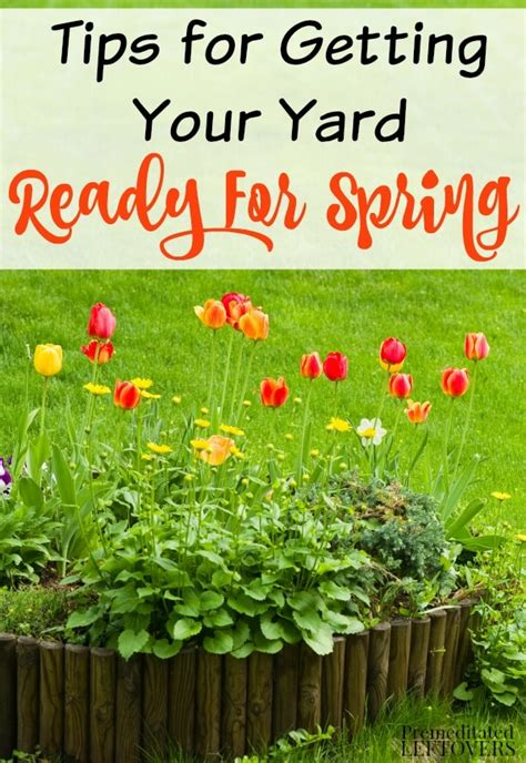 getting ready for spring how to get your yard ready for spring
