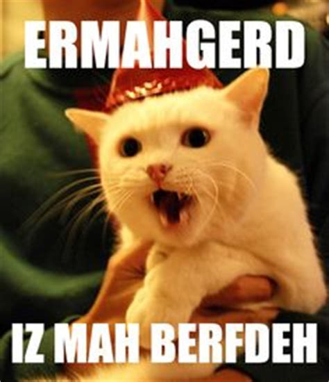 Ermahgerd Happy Birthday Meme - 1000 images about ermahgerd cat on pinterest cats humor