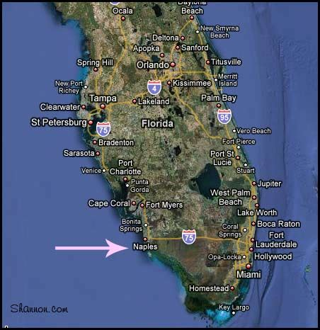 Map Naples Florida by Map Of Naples Florida Beaches Memes