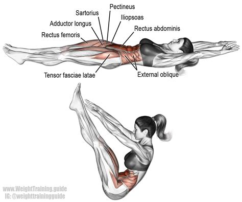 the v up v up this is an advanced exercise muscles worked rectus abdominis