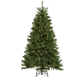 lowes real christmas trees best 28 lowes live trees price living 4 5 ft indoor outdoor bristen pine
