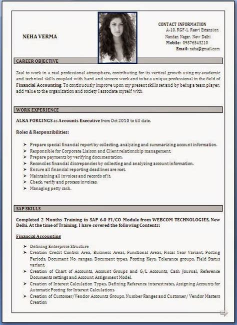 ideal resume format in india best cv sles