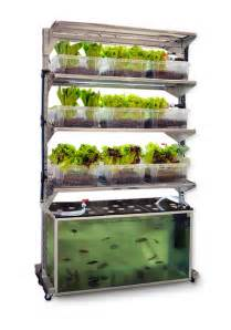 indoor garden setup diy kitchen aquaponic system grows a meal a day grid